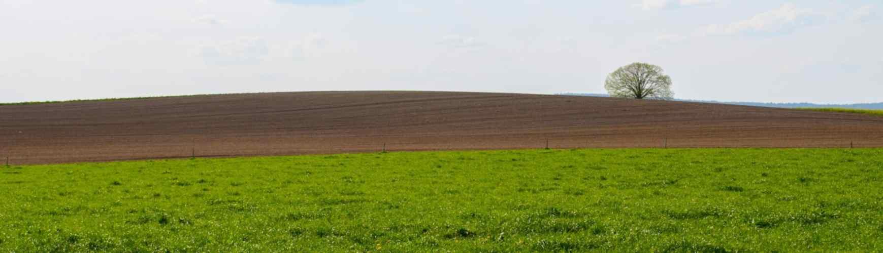 landscape-3370760_1920 - Copia